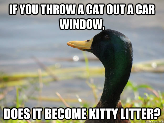If you throw a cat out a car window, does it become kitty litter? - If you throw a cat out a car window, does it become kitty litter?  Deep Thought duck
