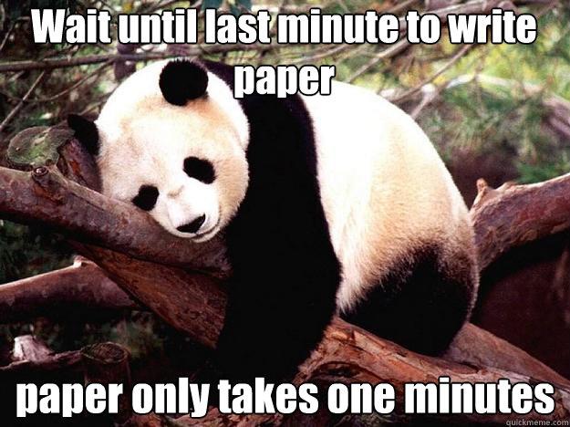 wait until last minute to write paper paper only takes one minutes wait until last minute to write paper paper only takes one minutes