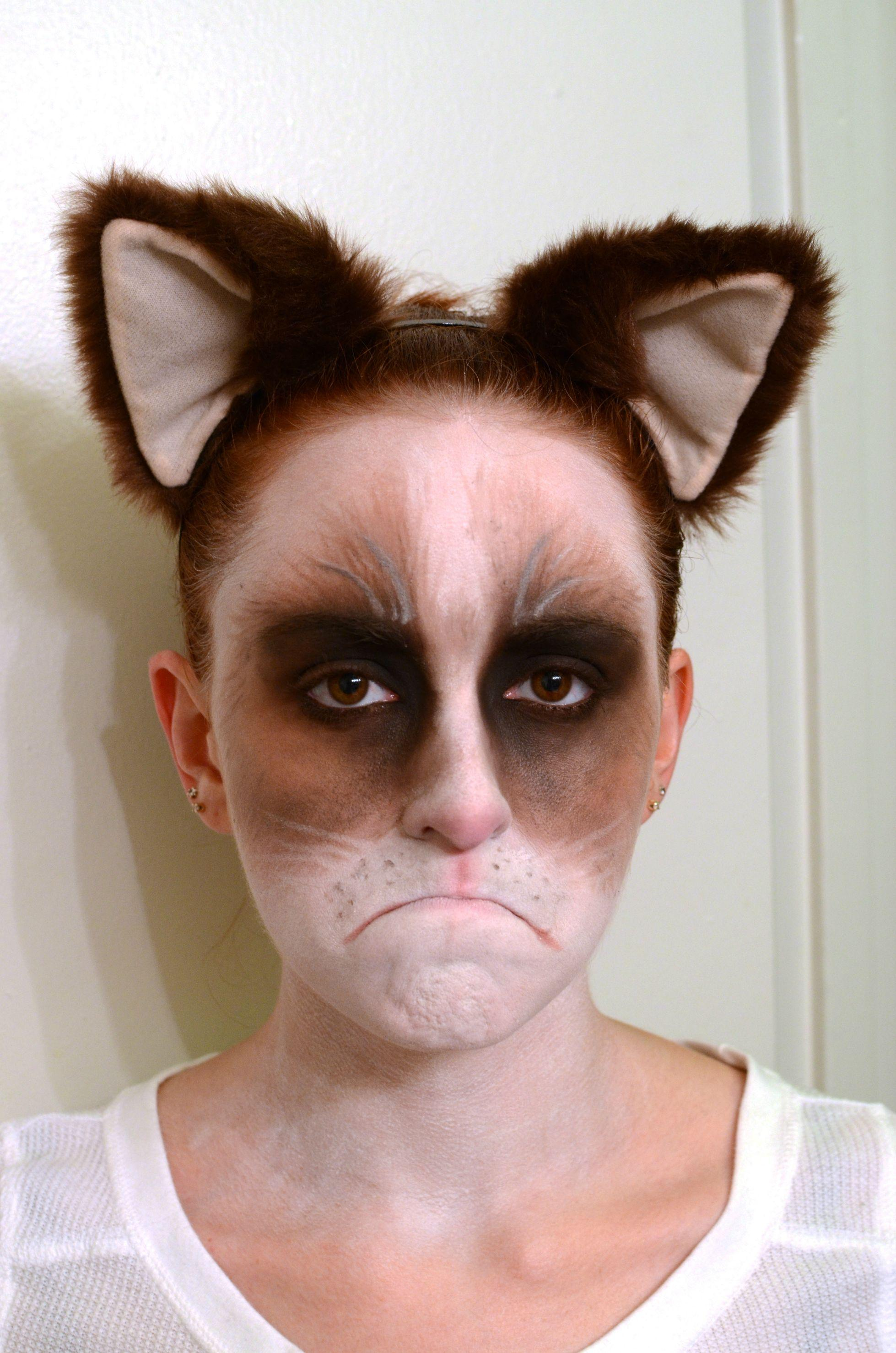 Grumpy Cat makeup success! -   Misc