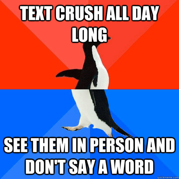 text crush all day long see them in person and don't say a word - text crush all day long see them in person and don't say a word  Socially Awesome Awkward Penguin