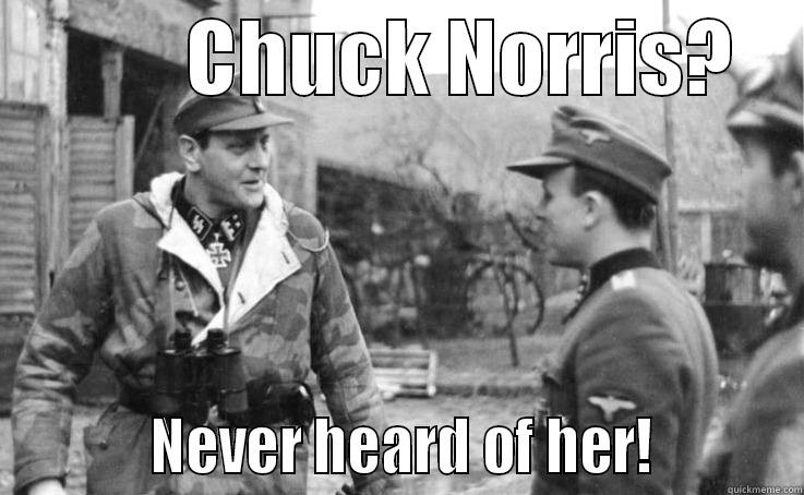 Chesty puller chuck norris