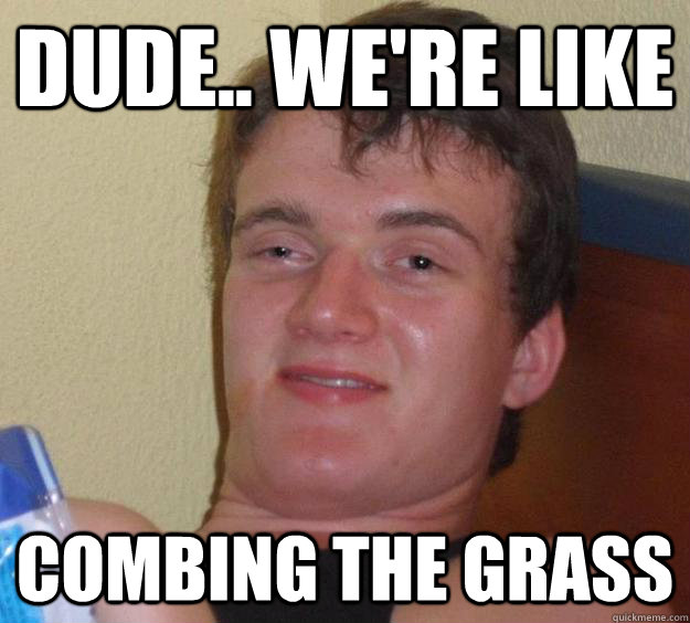 Dude.. we're like  Combing the Grass - Dude.. we're like  Combing the Grass  10 Guy