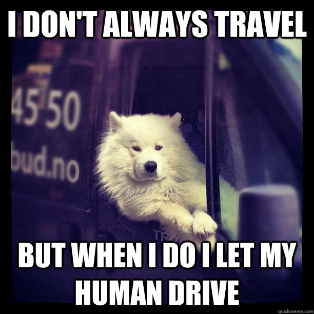I don't always travel but when i do i let my human drive