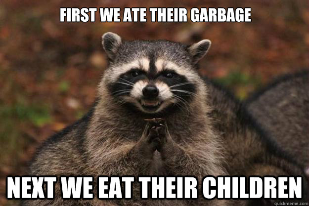 First we ate their garbage  next we eat their children - First we ate their garbage  next we eat their children  Evil Plotting Raccoon