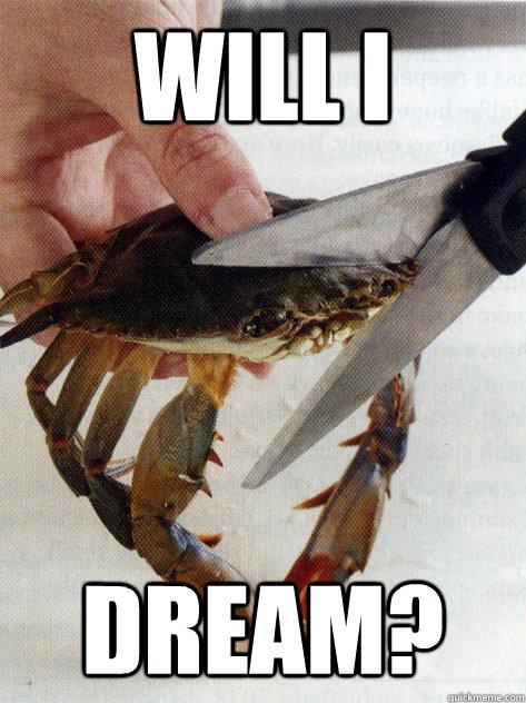 Will I  Dream?  Optimistic Crab