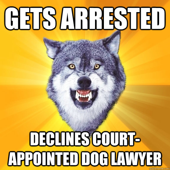 gets arrested declines court-appointed dog lawyer - gets arrested declines court-appointed dog lawyer  Courage Wolf