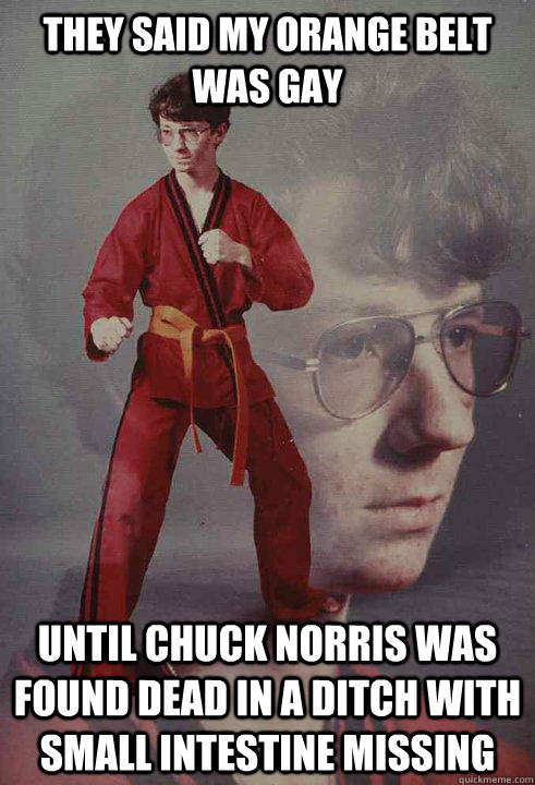 they said my orange belt was gay until chuck norris was found dead in a ditch with small intestine missing - they said my orange belt was gay until chuck norris was found dead in a ditch with small intestine missing  Karate Kyle