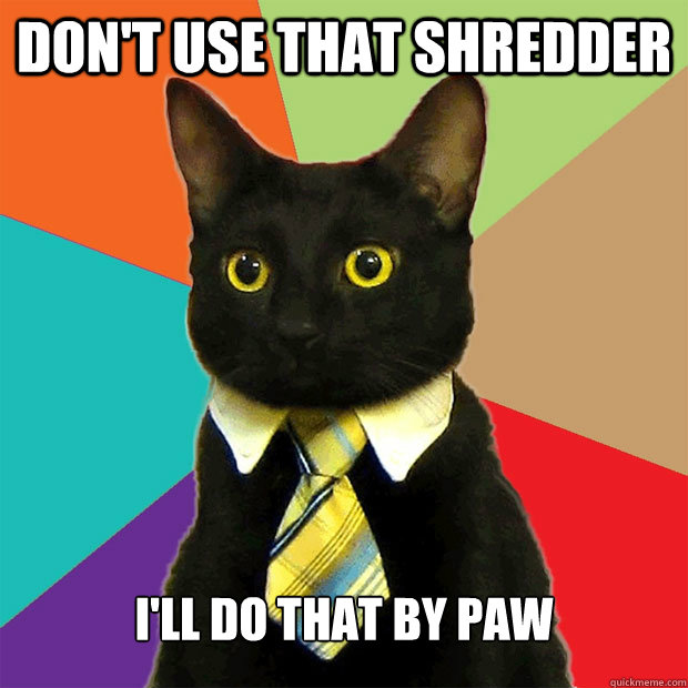 Don't use that shredder I'll do that by paw - Don't use that shredder I'll do that by paw  Business Cat
