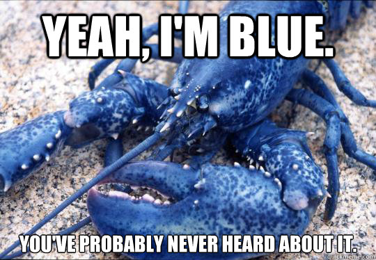 Yeah, i'm blue. You've probably never heard about it. - Yeah, i'm blue. You've probably never heard about it.  Hipster Lobster