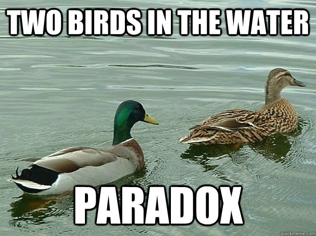 Two birds in the water Paradox - Two birds in the water Paradox  Misc
