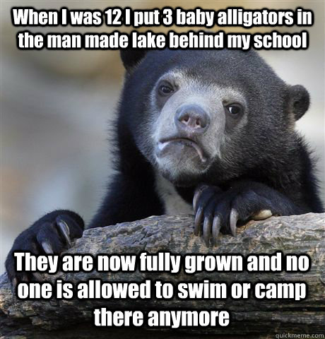 When I was 12 I put 3 baby alligators in the man made lake behind my school They are now fully grown and no one is allowed to swim or camp there anymore - When I was 12 I put 3 baby alligators in the man made lake behind my school They are now fully grown and no one is allowed to swim or camp there anymore  Confession Bear