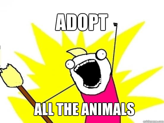 Adopt ALL the animals - Adopt ALL the animals  X All The Things