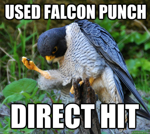 used falcon punch direct hit