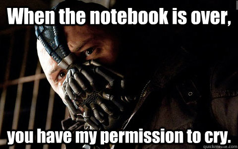 When the notebook is over, you have my permission to cry.