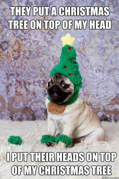 Christmas Spirit Pug memes | quickmeme