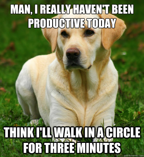 Man, I really haven't been  productive today Think I'll walk in a circle for three minutes - Man, I really haven't been  productive today Think I'll walk in a circle for three minutes  Dog Logic