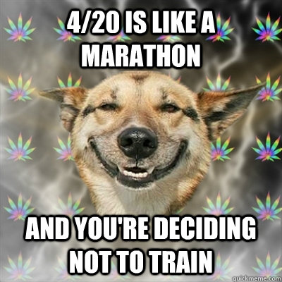 4/20 is like a marathon and you're deciding not to train