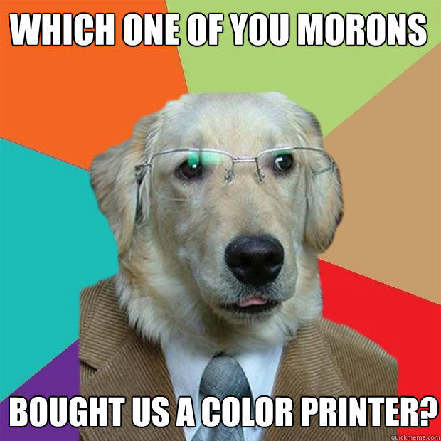 Which one of you morons Bought us a color printer? - Which one of you morons Bought us a color printer?  Business Dog