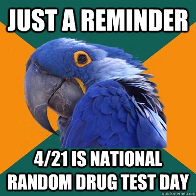 Just a reminder  4/21 is national random drug test day - Just a reminder  4/21 is national random drug test day  Paranoid Parrot