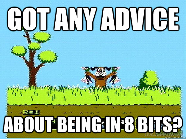 got any advice about being in 8 bits?  Duck Hunt