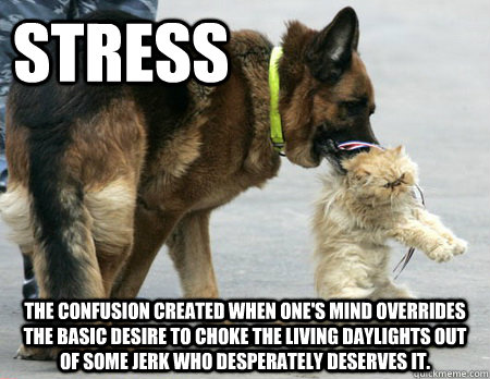 STRESS The confusion created when one's mind overrides the basic desire to choke the living daylights out of some jerk who desperately deserves it.  Stress