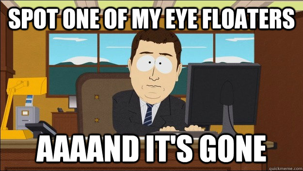 Image result for floaters in eye funny