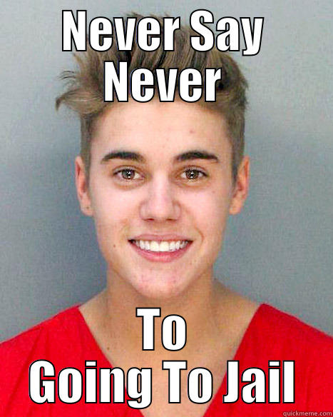 Justin Bieber Mugshot - NEVER SAY NEVER TO GOING TO JAIL Misc
