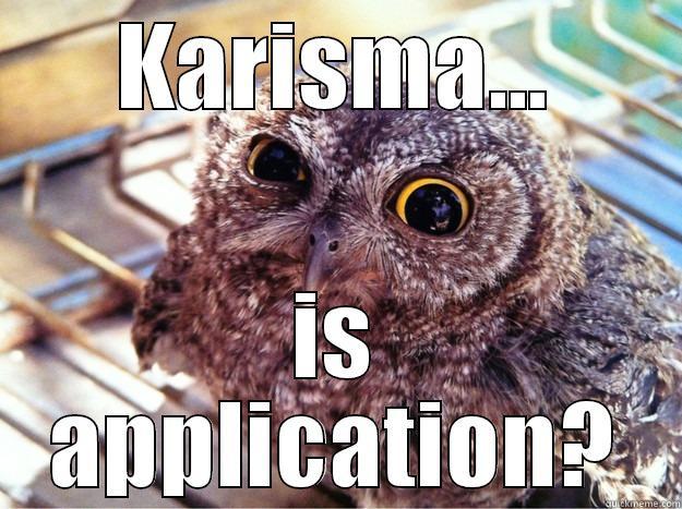 KARISMA... IS APPLICATION? Skeptical Owl