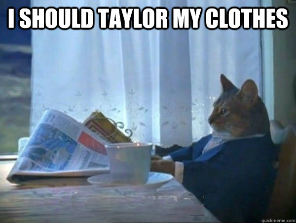 I should taylor my clothes  - I should taylor my clothes   morning realization newspaper cat meme