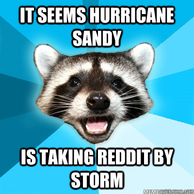 It seems Hurricane Sandy Is taking Reddit by storm  - It seems Hurricane Sandy Is taking Reddit by storm   Lame Pun Raccoon