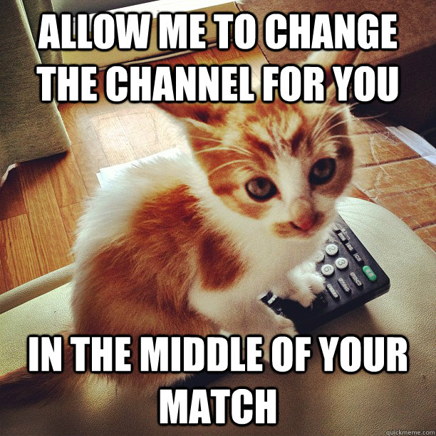 Allow me to change the channel for you in the middle of your match - Allow me to change the channel for you in the middle of your match  Meddling Kitten
