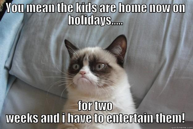School holidays! - YOU MEAN THE KIDS ARE HOME NOW ON HOLIDAYS..... FOR TWO WEEKS AND I HAVE TO ENTERTAIN THEM! Grumpy Cat