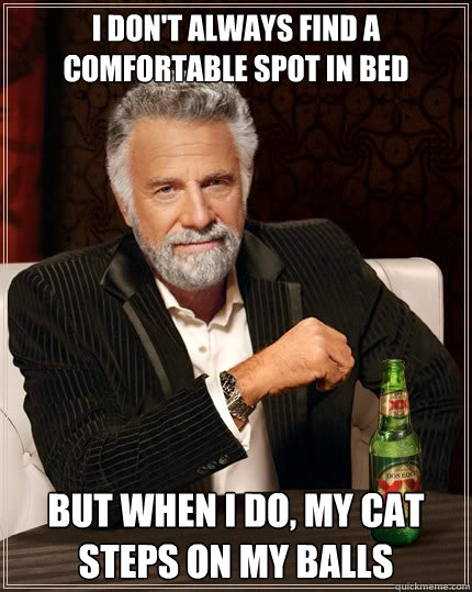 I don't always find a comfortable spot in bed but when I do, My cat steps on my balls - I don't always find a comfortable spot in bed but when I do, My cat steps on my balls  The Most Interesting Man In The World
