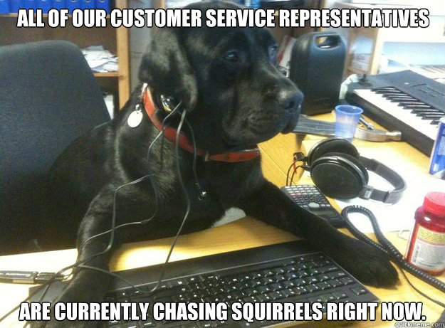 all of our customer service representatives are currently chasing Squirrels right now.