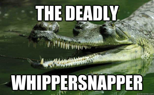The deadly Whippersnapper - The deadly Whippersnapper  Misc