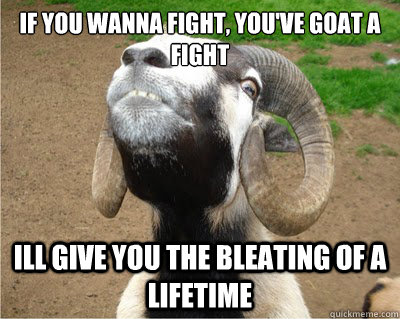 if you wanna fight, you've goat a fight ill give you the bleating of a lifetime - if you wanna fight, you've goat a fight ill give you the bleating of a lifetime  Angry Goat