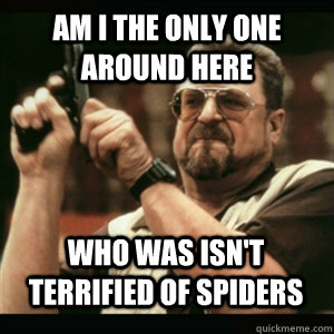 Am i the only one around here Who was isn't terrified of spiders - Am i the only one around here Who was isn't terrified of spiders  Misc