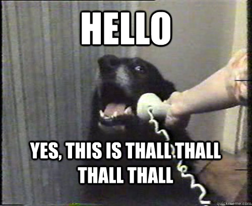 HELLO YES, THIS IS thall thall thall thall