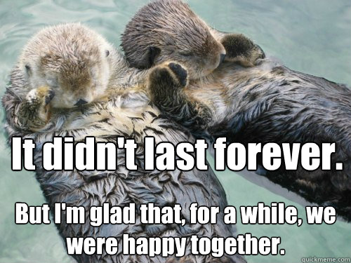 It didn't last forever. But I'm glad that, for a while, we were happy together. - It didn't last forever. But I'm glad that, for a while, we were happy together.  Reflective Relationship Otters