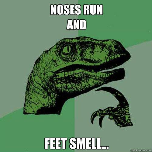 Noses Run And Feet Smell...  Philosoraptor