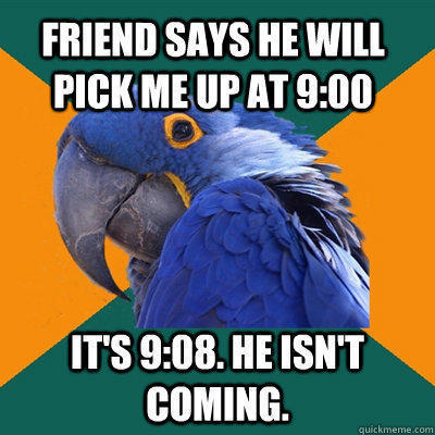Friend says he will pick me up at 9:00 It's 9:08. He isn't coming. - Friend says he will pick me up at 9:00 It's 9:08. He isn't coming.  Paranoid Parrot