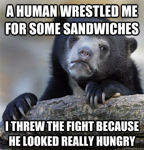 A human wrestled me for some sandwiches I threw the fight because he looked really hungry - A human wrestled me for some sandwiches I threw the fight because he looked really hungry  Confession Bear