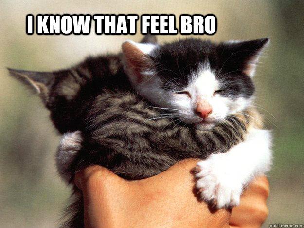 I know that feel bro  - I know that feel bro   Misc