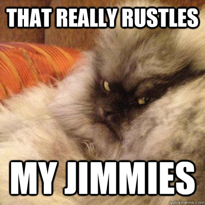 That really rustles my jimmies - That really rustles my jimmies  Misc