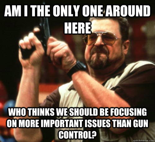 Am i the only one around here who thinks we should be focusing on more important issues than gun control? - Am i the only one around here who thinks we should be focusing on more important issues than gun control?  Am I The Only One Around Here