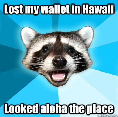a7459cd99f46691832dca650357aaa14354184d0e887f06f672bda83b3da63a3 lost my wallet in hawaii looked aloha the place lame pun coon