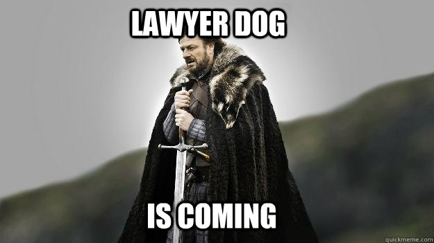 Lawyer Dog IS COMING  Ned stark winter is coming