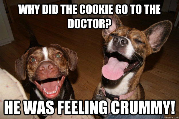 Why did the cookie go to the doctor? He was feeling crummy! - Why did the cookie go to the doctor? He was feeling crummy!  Clean Joke Puppies