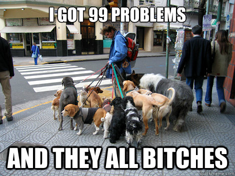 I got 99 problems And they all bitches  Frustrated Dog Walker