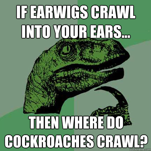 If earwigs crawl into your ears... Then where do cockroaches crawl?  Philosoraptor